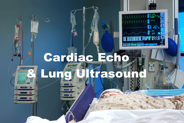 ICE-BLU: bedside echocardiography and lung ultrasound