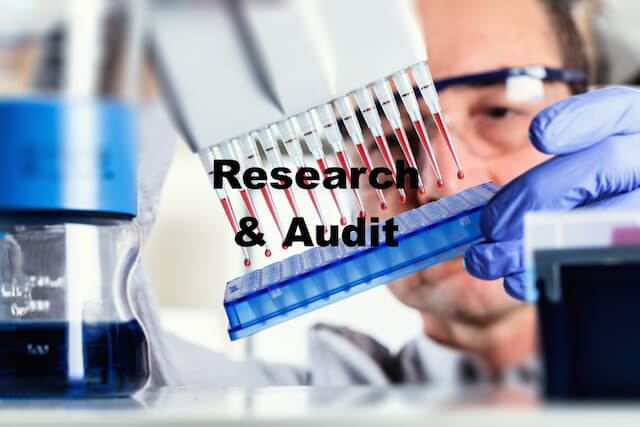 Research and Audit skills training